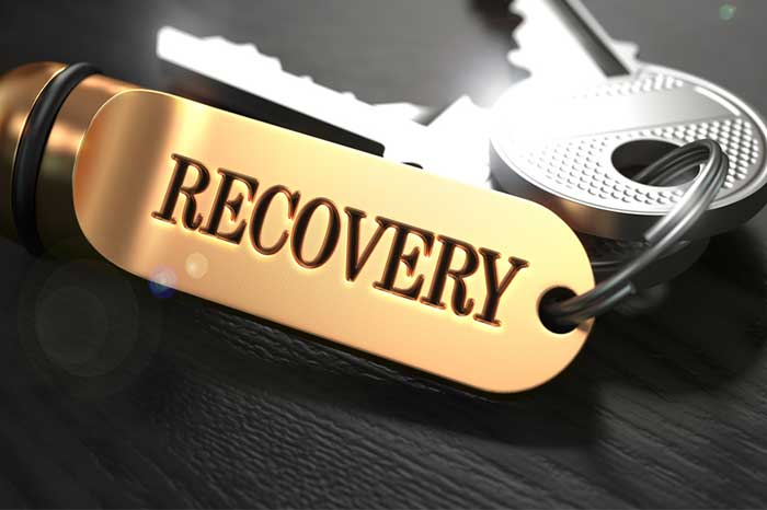 key_to_recovery1.2