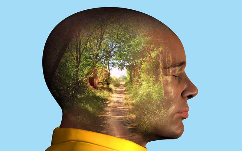 man-visualizing-path-woods-1.2