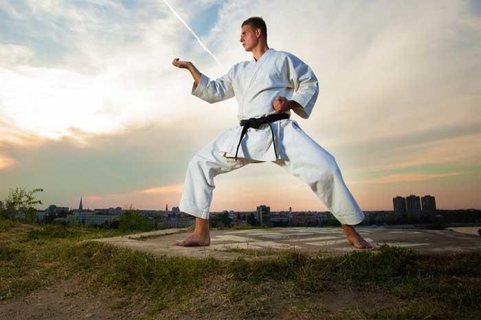 martial_arts_1.2