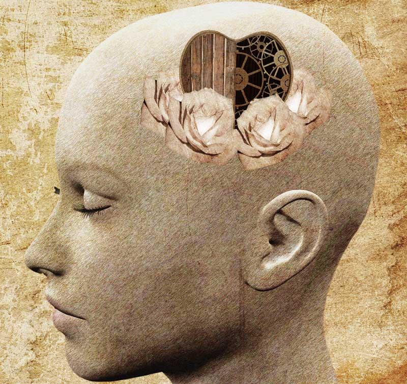 heart-in-place-of-brain-in-head-o